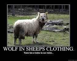 idiom wolf