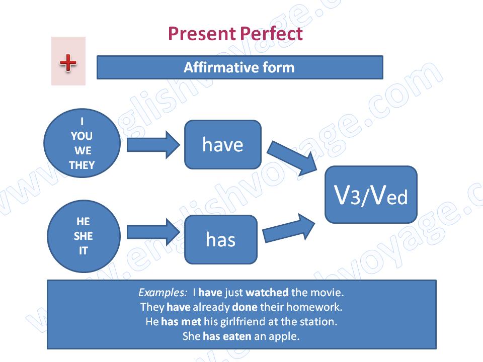 Present-Perfect-Affirmative