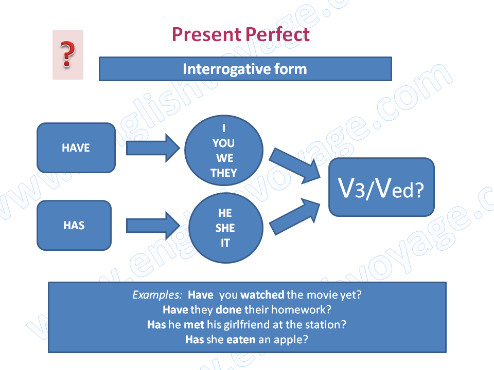 Present-Perfect-Interrogative