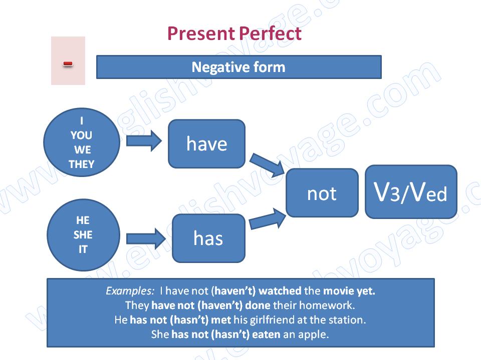 Present-Perfect-Negative